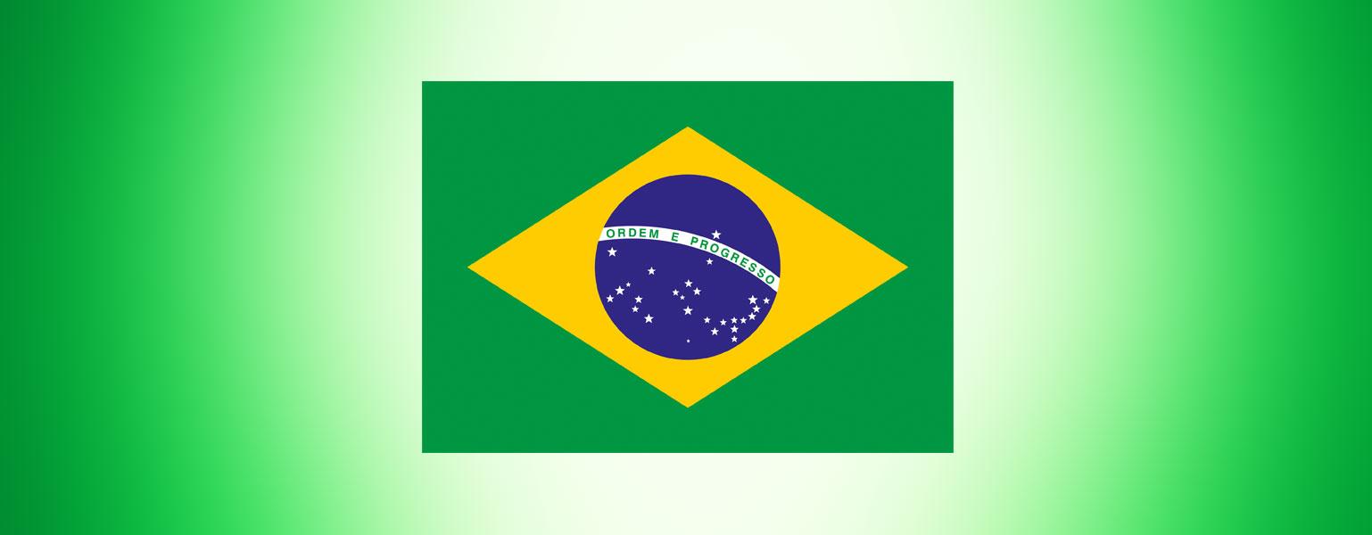 """ilustração. Sobre fundo verde-claro está a bandeira do Brasil. É um retângulo verde. No centro, um grande losango amarelo e, no centro dele, uma esfera azul. Uma faixa branca curvada atravessa a esfera e, nela, está escrita a frase """"ordem e progresso"""" em verde. Estão distribuídas 26 estrelas brancas na esfera. 25 abaixo da faixa branca e uma acima da faixa."""