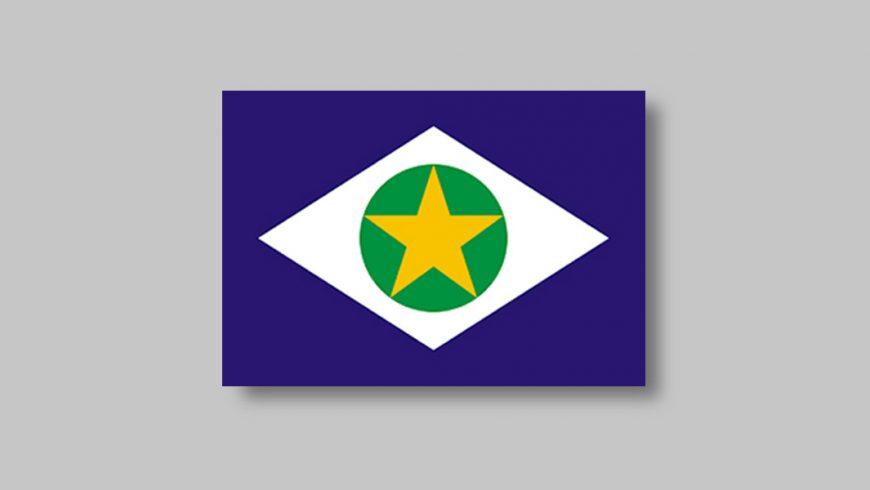 Retângulo azul, sobre ele, um losango branco, e dentro dele um círculo verde. Os três elementos estão centralizados, numa disposição semelhante à da bandeira brasileira. Dentro do círculo há uma estrela amarela, cujas 5 pontas tocam a linha da circunferência.