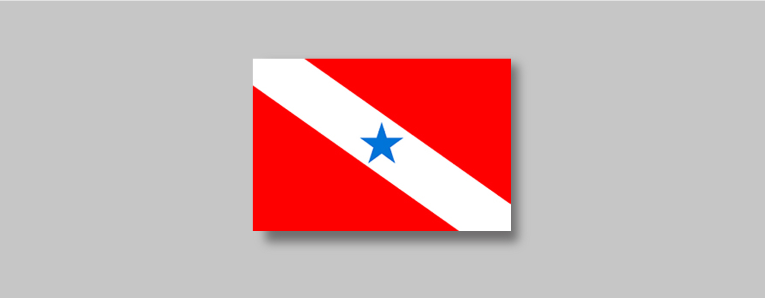 Retângulo vermelho cortado por uma faixa branca que vai do canto superior esquerdo ao canto inferior direito, formando assim dois triângulos vermelhos, um acima e outro abaixo da faixa. No centro da faixa branca há uma estrela de cinco pontas azul.