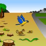 Pandemias e meio ambiente